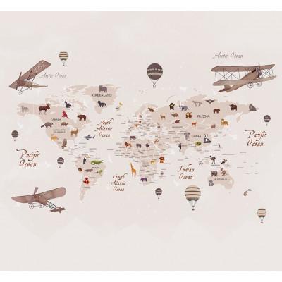 Карта мира, S1003, размер 291х270 см