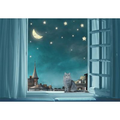 Звездное небо, S1104, размер 388х270см