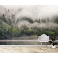 Лес в тумане, S1174, размер 388х270см